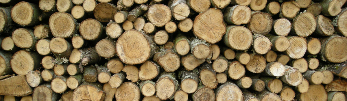 Træ piller